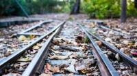 Leaves on railway line