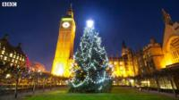 Christmas tree in Westminster