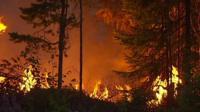 Wildfire in Sweden, 16 Jul 18