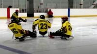 Three para-ice hockey players about to collide