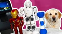 A collection of robots with a dog