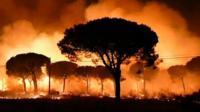 Fire raging in La Penuela, Huelva province, 24 June 2017