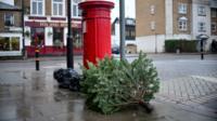 Abandoned christmas tree