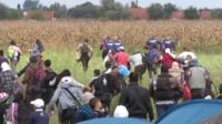 Migrants run into fields at Roszke