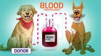 Cartoon picture showing one dog donating blood to another