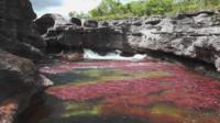 Río de los siete colores en Colombia.
