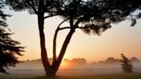 Foggy sunrise in Surrey