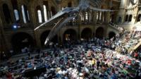 Protesters at Natural History Museum