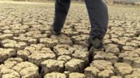Cracked earth in Namibia desert