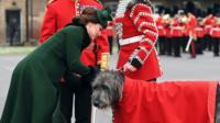 Duchess of Cambridge and Irish wolfhound