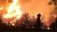 Image of firefigther near flames in Portugal