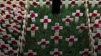 Poppy tributes