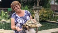 Ann Ovenstone with a tortoise