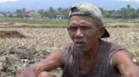 Indonesian rice farmer
