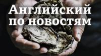 Заставка видео Lingohack (Английский по новостям) / Английский язык: уроки, аудио, видео, тесты Би-би-си