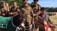 Guernsey donkey with military enthusiasts