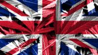 Cannabis leaves on a Union Flag