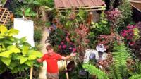 Ross Lee in his tropical-themed garden
