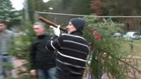 Man throwing Christmas tree