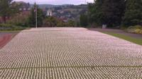 Shrouds laid out in park in Devon
