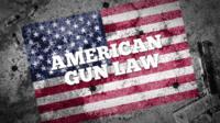 American gun law graphic