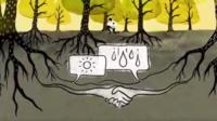 Dibujo que simboliza a dos árboles comunicándose bajo la tierra