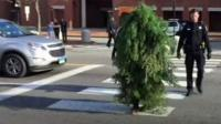Asher Woodworth dressed as a tree in Portland, Maine.
