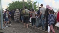 People crossing the Hungarian-Serbian border