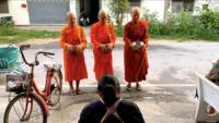 Thai female monks