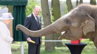 Queen feeds banana to elephant