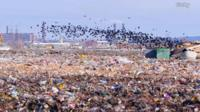 A landfill outside Moscow