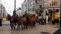 Лошади на Оксфорд-стрит.