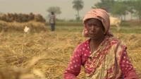 Indian farm labourer