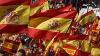 Demonstrators hold Spanish flags in Madrid.