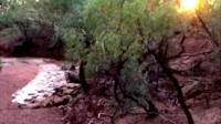 Video of a policeman reacting to the McKinlay River flowing in the drought-effected Australian state of Queensland has gone viral.