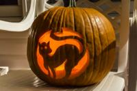Image of a carved pumpkin with a cat inside