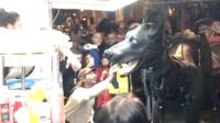 Marionette Xolo the dog goes for a surprise walk in Liverpool ahead of The Giants' performance around the city.