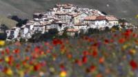 Castelluccio surrounded by poppies, cornflowers and lentils