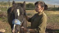 Lindsey Crosbie is the equine trainer for the horse therapy sessions