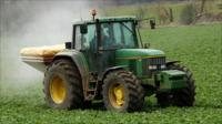 Tractor spreads fertilizer on a crop of sugar beet