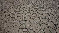 Dried out lake bed`