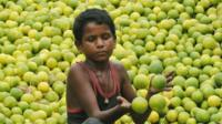 Boy collects lemons at a wholesale fruit market in Kolkata, India
