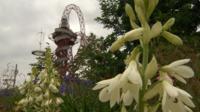Olympic park gardens