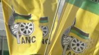 ANC party flags in South Africa
