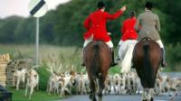 Fox hunt riders and dogs