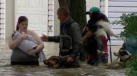 Woman with child and several dogs being helped through flood water