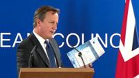 """David Cameron holds children's """"Mr and Mrs MEP"""" booklet"""