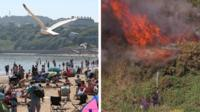 Scarborough beach soaks up the sun while a fire burns on Mitcham Common in south London