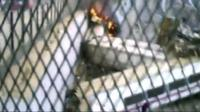 Amateur footage shows train on fire