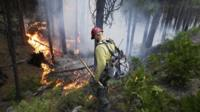 A firefighter monitors a fire near Yosemite National Park